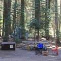 - Crane Flat Campground