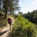 - McClintock Trail Hike