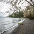 - Lake Quinault, Willaby Campground
