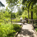 - West Hylebos Wetlands Park