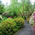 - Crystal Springs Rhododendron Garden