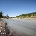 - Nisqually River Campsite