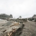 - La Push, First Beach