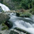 - Whiteoak Creek Falls