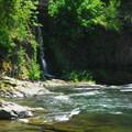 - Wilson River, Footbridge Day Use Area