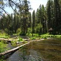 - Pine Rest Campground