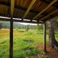 - Olallie Meadow Campground