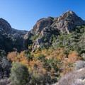 - Chaparral Trail Loop Hike
