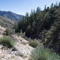 - Devils Canyon Trail Hike