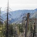 - Windy Gap Trail Hike