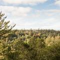 - La Corona Trail Hike