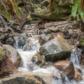 - Eagle Creek Trail Hike