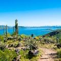 - Yavapai Point Trail