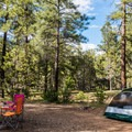 - Mather Campground