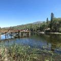 - Jenks Lake