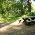 - Sharps Creek Recreation Area Campground