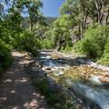 - Grizzly Creek Trail