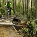 - Mount Fromme Mountain Bike Trails: No Quarter + Dreamweaver Loop