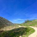 - Umtanum Ridge Crest Trail