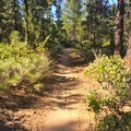 - Phil's Trail Complex: Ben's Trail to Phil's Trail Loop
