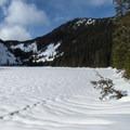 - Talapus Lake Snowshoe