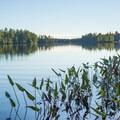 - Francis Lake