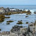 - Asilomar State Marine Reserve