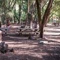 - Uvas Canyon County Park