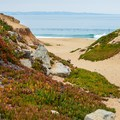 - Fort Ord Dunes State Park