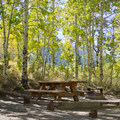 - Gull Lake Campground