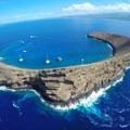 - Molokini Crater Snorkeling + Diving Tour