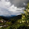 - Sierra Norte of Oaxaca