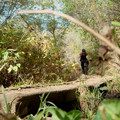 - Mueller Park Trail Mountain Bike Ride to Big Rock