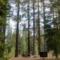 - Goose Meadows Campground