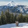 - Gunsight Ridge Backcountry Ski via Pocket Creek