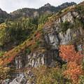 - Stewart Falls Trail