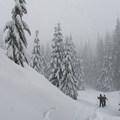 - Sasquatch Ski Trail