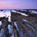 Kelp Cove at the Fitzgerald Marine Reserve.- 9 of the West Coast's Best Tide Pools