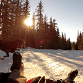Sledding down the Glade Trail from Timberline Lodge.- 6 Great Holiday Adventures