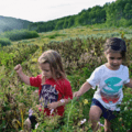 A variety in skin micro-biome comes from interacting with plants. - 4 Scientific Reasons Why Kids Should Be Outdoors