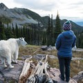 Sharing views with a friend.- A Guide to Backpacking Glacier via Amtrak