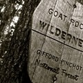 The wilderness sign is like an old friend, serving as a reminder that you're entering a special place.- Nifty, Nifty, Look Who's Fifty