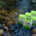 Photo courtesy of Marielle Cowdin.- Exploring Oregon Watersheds: Adventure Brews