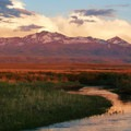 Humboldt-Toiyable National Forest, Nevada- Five Reasons Wildlife Appreciate National Forests