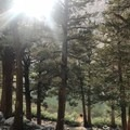 Whitney trail views.- Lightning, wildfires, and fickle friends: Lessons from Mount Whitney