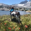 Views from the lake.- Trail Talk: Life Lessons From the John Muir Trail