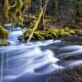 South Fork Clackamas River.- 3 Hikes = 5 Waterfalls You've Never Heard Of