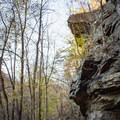 The Cumberland Trail is filled with beautiful geological features!- Hidden Gems in Tennessee's Beautiful State Parks