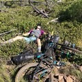 "Taking a ""break"" in the bushes. - Bikepacking the Oregon Timber Trail"