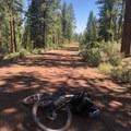 Gravel roads for days heading into Chemult, Oregon.- Bikepacking the Oregon Timber Trail